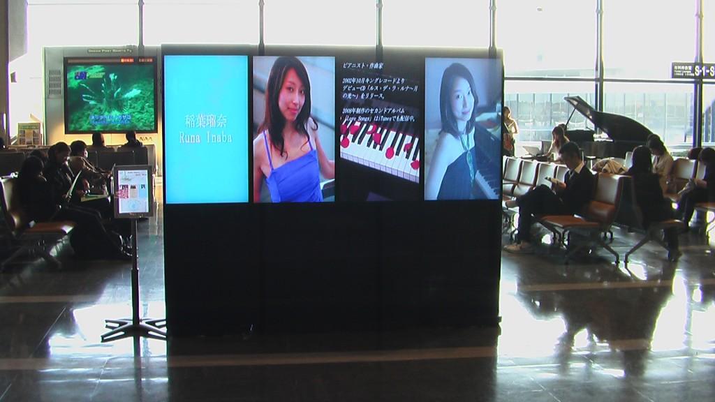 Narita Airport2